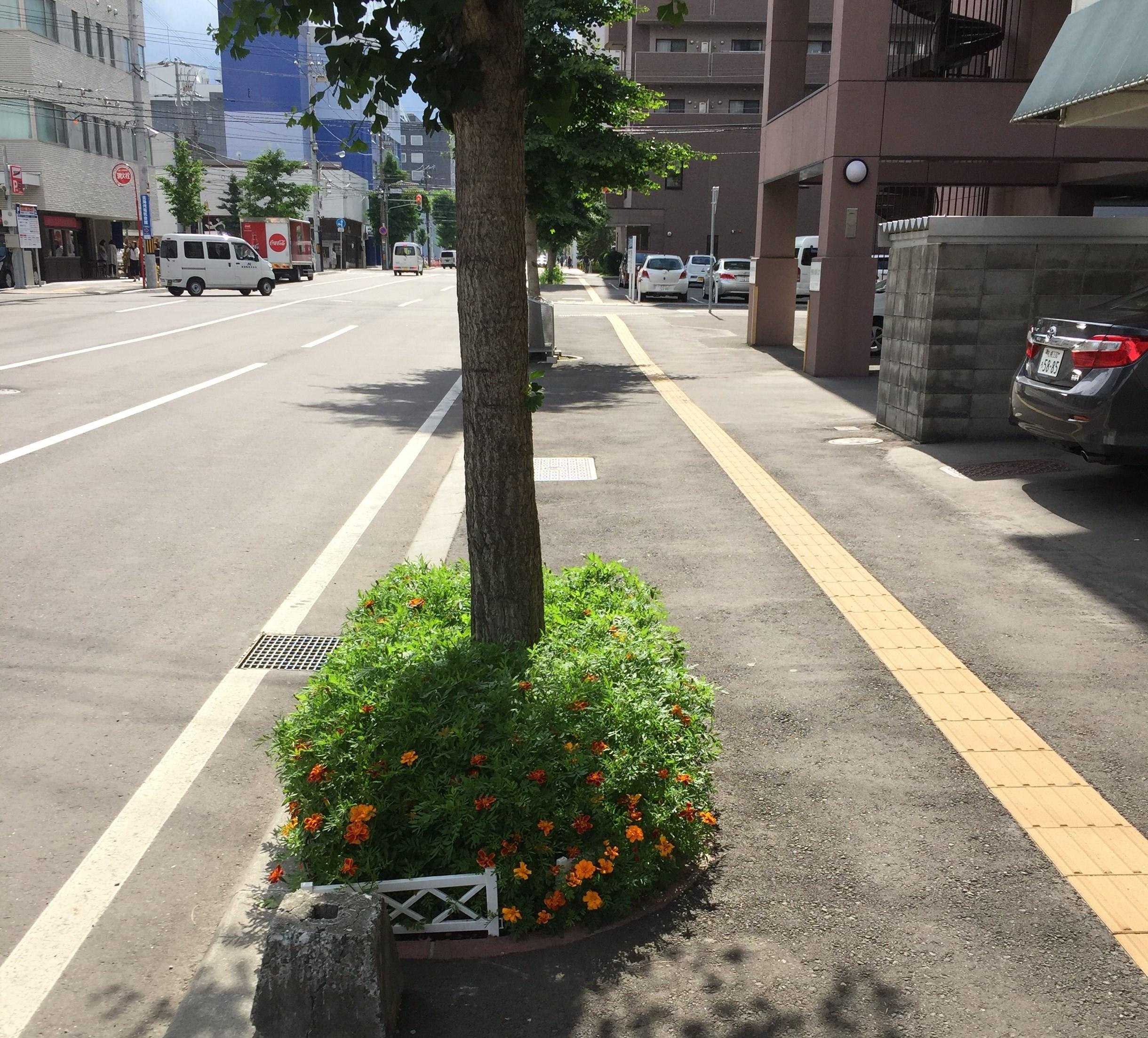 さき も と 札幌